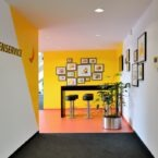 Interior design & wall painting